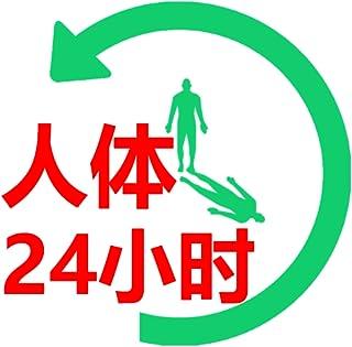 人体24小时工作表
