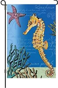 Premier 51942 花园照明旗帜,游泳海马,12 x 18 英寸