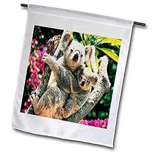 florene animals–MAMA N 婴儿考拉熊 SO adorable–旗帜 12 x 18 inch Garden Flag