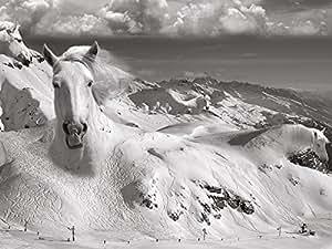 "Thomas Barbey""Icy Studs 帆布印花,多色,60 x 80 cm"