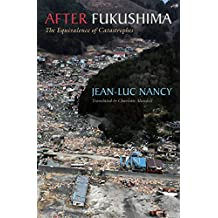 After Fukushima: The Equivalence of Catastrophes (English Edition)