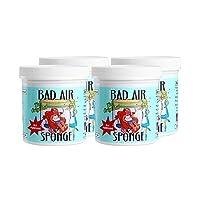 The ORIGINAL Bad Air Sponge吸收异味空气净化剂400g 4灌装 包税包邮