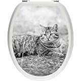 Pixxp/3D WCS 7217 32x40 林地上的猫如厕贴纸、WC、马桶盖、Gläzendes 材料、黑/白、40 x 32 厘米