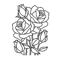 "Darice""精致的野花""浮雕文件夹,透明/白色,10.8 x 14.8 厘米 透明/白色 4.25 x 5.75-Inch 30008386"