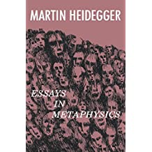 Essays in Metaphysics: Identity and Difference (English Edition)