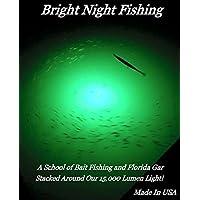 15000 流明 25ft 绳防水交流水下钓鱼灯* LED 潜水基座灯,
