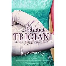 Big Stone Gap: A Novel (English Edition)