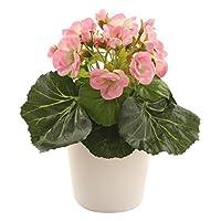 Closer2Nature 仿真 7.5 英寸粉红非洲紫罗兰植物