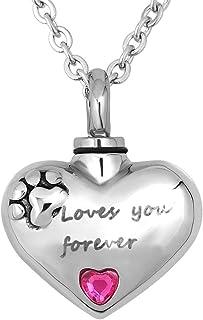 CoolJewelry 灰姑娘花朵爱心 Cremation 纪念吊坠 Love You Forever 纪念品 不锈钢首饰