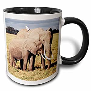 danita delimont–大象–肯尼亚, amboseli NP ,母亲大象, loxodonta africana ,带 YOUNG .–马克杯 黑色/白色 11 oz