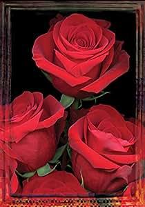 托兰 家居花园清新切割 31.75 x 45.72 cm 装饰红玫瑰情人节花花园旗帜