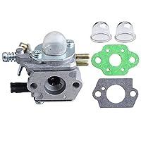 HIPA C1U-K52 C1U-K47 化油器 用于 ECHO SRM2100 SRM2110 GT200 GT200EZR GT2000 GT2000R GT2100 PAS2000 PE2000 PP1200 PPF2100 PPF2110 PPSR2122 PPT2100 功率修剪器