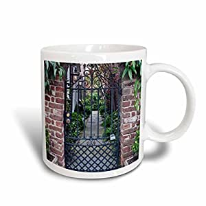 3drose danita delimont–房屋–美国,南卡罗来纳州,,历史房屋门查尔斯顿–us41rti0010–ROB tilley–马克杯 白色 11 oz