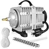 Simple Deluxe 110 升/分钟商业气泵