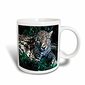 3dRose mug_37630_3 Jaguar, Endangered Species, Belize Rainforest Magic Transforming Mug, 11-Ounce