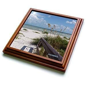 florene 海滩–sanibel 海滩 awaits–trivets 棕色 8 到 8 英寸