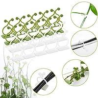 植物固定器自粘挂钩植物攀岩墙夹子藤架用于花园蔬菜植物藤蔓支架