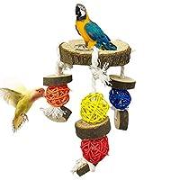 Stosts 鸟栖息鹦鹉玩具,自然木制支架平台悬挂运动场带藤制咀嚼球,鸟笼配件适用于鹦鹉、鹦鹉、虎皮鹦鹉、金刚鹦鹉、金刚鹦鹉、爱鸟