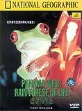 国家地理杂志:巴拿马生态(VCD)