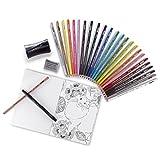 Prismacolor Premier 彩铅成人美术套装 含晕染工具 美术马克笔 橡皮擦 削笔刀和图画本 29件