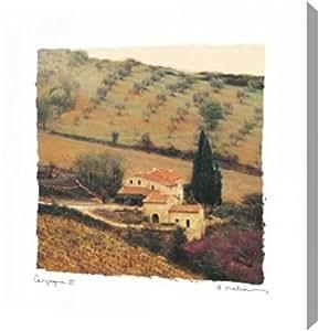 "PrintArt GW-POD-11-MEL-249-12x12""Campanga III"" 由 Amy Melious Gallery 包边艺术微喷油画艺术印刷品 20"" x 20"" GW-POD-11-MEL-249-20x20"