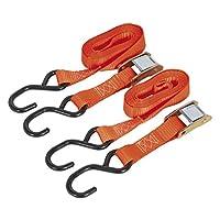 Sealey TD05025CS 25mm x 2.5mtr 涤纶织带凸轮扣 带 S 钩 500kg 负载测试