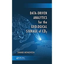 Data-Driven Analytics for the Geological Storage of CO2 (English Edition)
