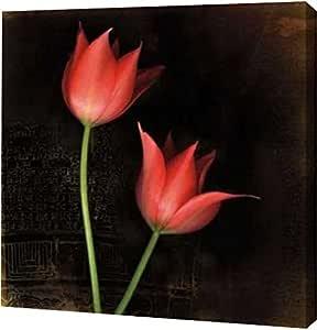 "PrintArt GW-POD-29-12642-20x20 ""物种郁金香""来自 Rick Filler 画廊装裱艺术微喷油画艺术印刷品 16"" x 16"" GW-POD-29-12642-16x16"