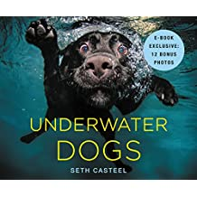 Underwater Dogs (English Edition)