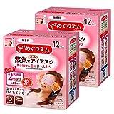 【批量购买】通过眼部湿润的蒸汽发热眼罩 无香料 12片×2