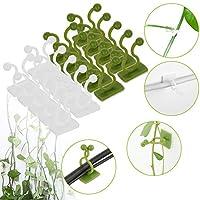植物固定器自粘挂钩植物攀岩壁具夹子藤架用于花园植物藤蔓支撑(100,样式C)