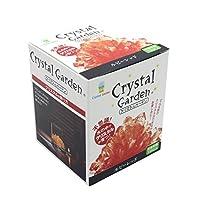 不可思议 在水中培育水晶 Crystal Garden 红色