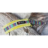FinNero 宠物产品,芬兰 - 北极光软垫羊毛狗项圈