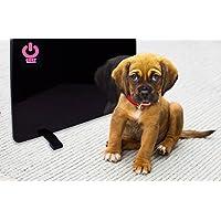 Cozy Products 舒适宠物加热器 200 瓦 小型面板加热器 - 对猫和狗*,节能,环保,19 x 13 x 5⁄8 英寸(约 48.3 x 33.0 x 12.7 厘米),5 磅(约 2.3 千克)。