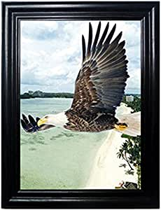 EAGLE FRAMED Wall Art-Lenticular Technology Causes The Artwork To Flip-MULTIPLE PICTURES IN ONE-HOLOGRAM Type Images Change-MESMERIZING HOLOGRAPHIC Optical Illusions By THOSE FLIPPING PICTURES