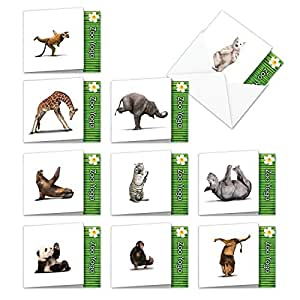 MQ6547OCB-B1x10 ZOO YOGA: 10 Assorted 'Square-Top' Blank, All Occasions Note Cards Featuring Fun and Flexible Zoo Animals Practicing Various Yoga Poses with Envelopes.