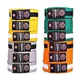 Tatami Fightwear 中性款 kidsibjjfbelts-0012 IBJJF 儿童排名腰带,灰色和白色条纹,M4