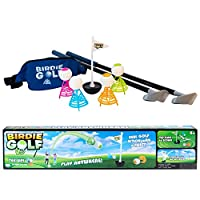 Hog Wild - 鸟类高尔夫 - 户外游戏可在后院、海滩、草坪上玩耍 - 儿童、成人和家庭积极玩耍 - 套装包括 2 个球杆、1 个旗子、4 个鸟儿和 1 个小孩包