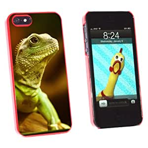 Graphics and More Asian Water Dragon Green Lizard Reptile - Snap-On Hard Protective Case for Apple iPhone 5/5s - Non-Retail Packaging - Red