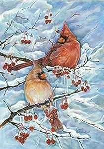 托兰 家居花园红雀和浆果 31.75 x 45.72 cm 装饰冬季雪地红色鸟Perch 花园旗帜