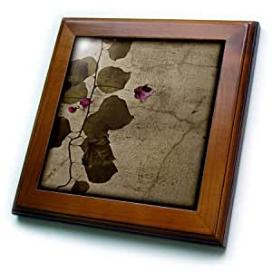 """3dRose ft_41251_1 Brown Bougainville a on Cracked Wall Framed Tile, 8 x 8"""""""