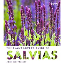 The Plant Lover's Guide to Salvias (The Plant Lover's Guides) (English Edition)