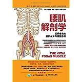 腰肌解剖学:缓解疼痛的腰肌保护与修复练习