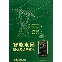 智能电网通信及组网技术
