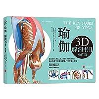 瑜伽3D解剖书2(动作篇)
