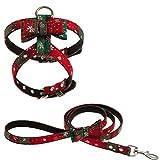 EXPAWLORER 圣诞小狗胸背带和牵引带套装 适合小狗和猫 - 无拉式可调节小狗背心猫胸背带带带蝴蝶结 易于日常行走 * M