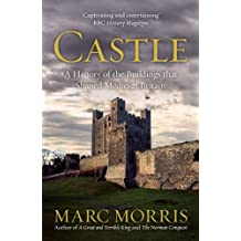 Castle: A History of the Buildings that Shaped Medieval Britain (English Edition)