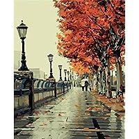Colour Talk DIY 油画,按数字套件绘画 - 浪漫爱秋 1620 英寸。 Framed Canvas YT-P-0393-Framed