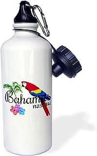 3dRose wb_299249_1 水瓶,21 盎司,白色