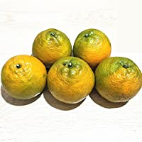 【好吃不上火】后楼瓯柑5斤 苦柑桔子橘子 新鲜水果 微苦后甜